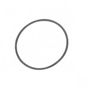 O-ring - 31534