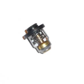 Termostat - 825212T02